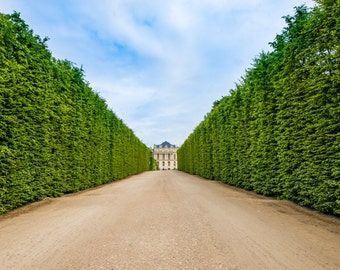 Versailles Gardens, France Wall Art, Versailles Print, French Home Decor, Versailles Print, Fine Art Photo, Versailles Photo, Wall Art