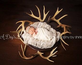 Newborn Digital Background / Antlers / Hunting / Rustic