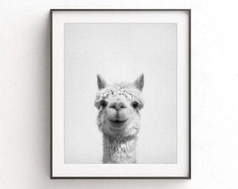 Alpaca print alpaca wall art nursery print alpaca art printable poster nursery decor digital download animal print black and white photo