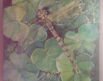 """Dragonfly Oil on Canvas Painting 20x20"""""""