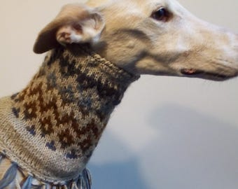 Snood for your hound,designed and knitted in italy,realized in wool and alpaca.