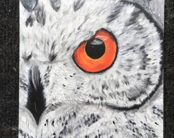 Original Owl Painting on Canvas