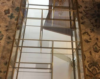 2 Mirrored Glass Shadow Boxes