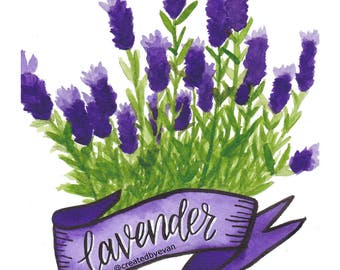 Lavender - botanical painting banner - A5 Glossy Print