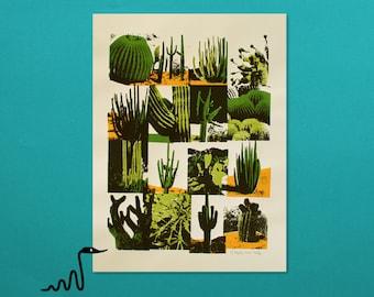 Cacti Variations - 4 Color Screenprint