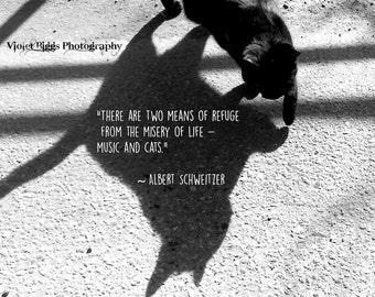 Limited Edition Print ~ Kitty ~ Albert Schweitzer Passage