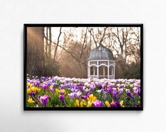 pavilion in spring, Leipzig, Photoprint, Art, Printart - Poster, Acrylic, PVC foamboard, canvas print