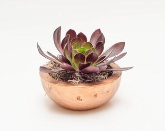 Concrete Planter,  Succulent Planter, Cement Planter, Handmade,  Home Decor, Gift idea, Includes Succulent