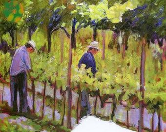 Pruining vines