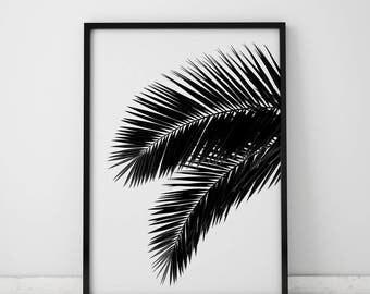Palm Tree - INSTANT DOWNLOAD, Printable, Modern Art, Photography, Minimalist, Art Prints, Wall Art, Home Decor, Interior Design, TropicalArt