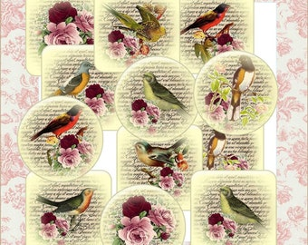 Digital Download Birds Collage Sheet