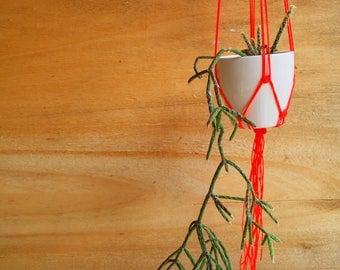 Neon Pot Holder / Modern Home Decor / Macramé Hanger / Air Planter / Minimal Pot Holder / Garden decor / Indoor Jungle / Indoor Garden