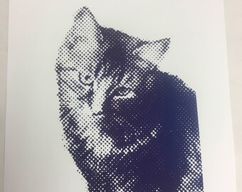 "Hand Pulled Screen Print-- ""MYSHKIN"" by Jenna Montgomery"