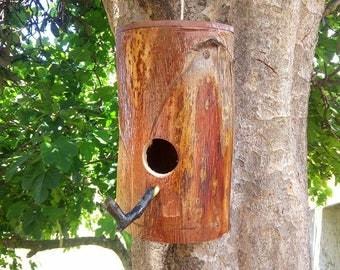 Sustainable Agave Birds House