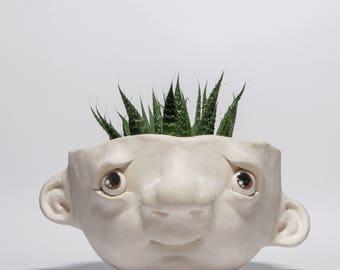 clay potface - Con