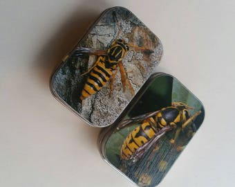 Mini hinge tin duo....wasp? Bees? Hornets???