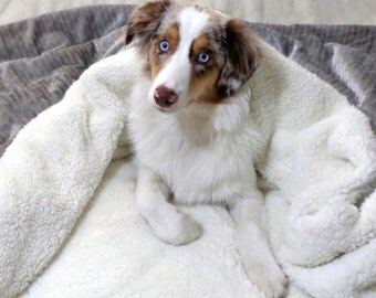 Dog Bed - Snuggle Sack - Cuddle Bag - Plush Snuggle Sack - Mercury Chevron Minky - Includes Embroidered Personalization