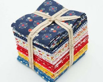 Gingham Girls by Amy Smart Fat Quarter Bundle 24 Pcs. (FQ-5900-24)