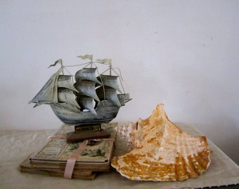 Natural Conch Sea Shell & Rustic Look Ship Costal Living Shelf Beach Wedding Decoration Nautical Living Room Costal Lot Porch and Garden