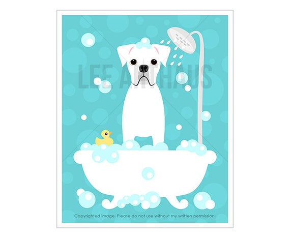 113D Dog Print - White Boxer Dog in Bubble Bath Wall Art - Bath Prints - Boxer Print - White Boxer Drawing - Dog Art - Funny Dog Drawing