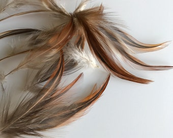 LOOSE  Bronze Hackle Feathers, Natural  /  750 - D