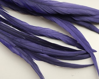 ROOSTER TAIL Feathers  X - long  /  Dark Wisteria  Purple   / 220