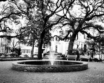 Photograph: Savannah City Square 4x6 Black and White Photo