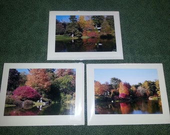 Scenes from Asticou Gardens in Northeast Harbor, Maine                     Blank Note Cards
