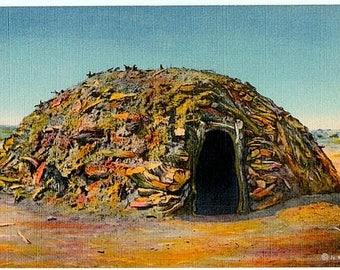 Vintage New Mexico Postcard - A Navajo Hogan (Unused)