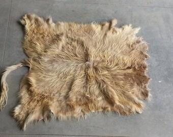Light Dun Scottish Highland Cowhide -  Soft tanned - Lot No. 25256TURQ