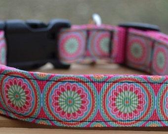 Medallian dog collar & or leash on pink webbing