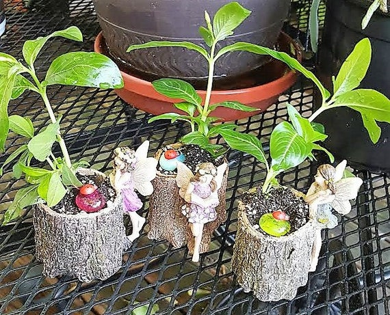 Mini Fairy Stump Planter