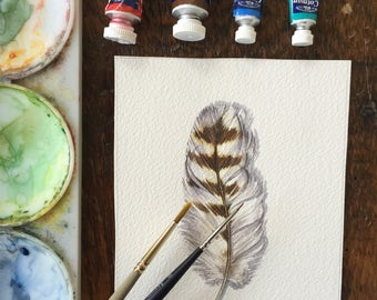 Hawk feather - Original watercolour painting