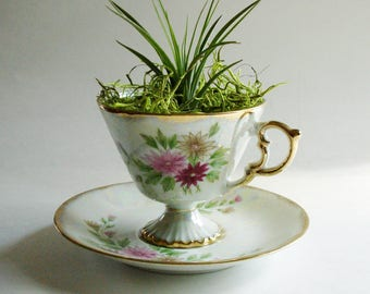 Vintage Tea Cup Decor, Tea Cup Planter, Air Plant Mother's Day gift, Aster Floral Tea Cup