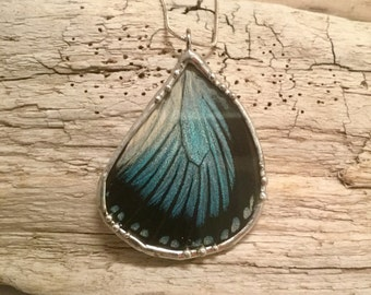 Real Butterfly jewelry, butterfly wing Necklace, butterfly, handmade real butterly jewelry, real butterfly pendant