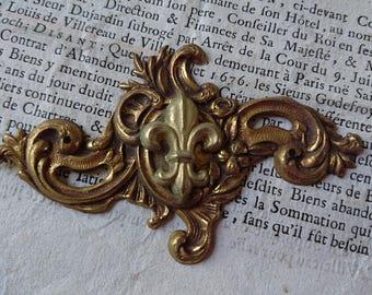 Beautiful antique French keyhole escutcheon plate with Fleur de Lys centre panel c1880 BELLE BROCANTE