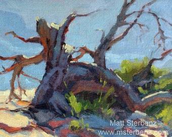 """Grand Canyon Original Plein Air Oil Painting """"Fallen Ancient"""""""