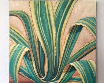 Agave Americana original oil by Carin Vaughn