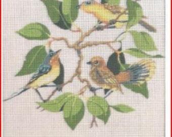 Needlepoint Circle Canvas : Flycatchers (Birds)