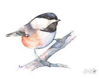 Chickadee print of watercolor painting, C20717, A4 size print, Chickadee watercolor print, Chickadee watercolor painting, Chickadee art