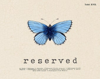 RESERVED for Toy