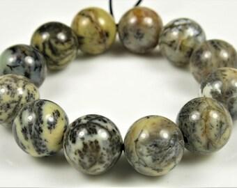Rare Australian Dendritic Moss Opalite Round Bead - 10mm - 12 beads - B5998
