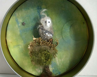 white owl shadow box