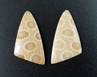 Beautiful Fossil coral  cabochon pair, earrings,set stone, Natural stone, , Jewelry making supplies S7423