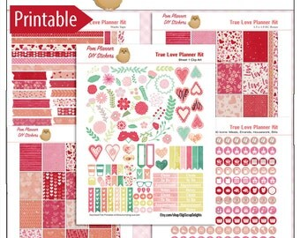 Feburary Planner Kit! True Love Printable Planner Stickers Kit  300 Stickers in Hearts, Flowers, Pink Green