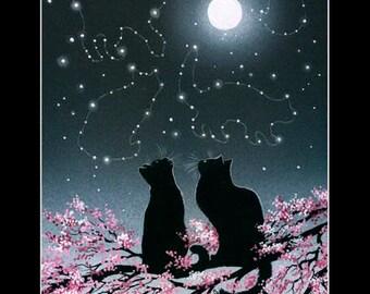 Black Cat Print Exploring The Constellations by Irina Garmashova