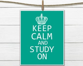 Keep Calm and Study On Dorm Decor  Custom Colors and Sizes