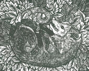 Hand pulled woodcut print- Thanatosis