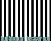 Black and White Stripe -  Vinyl Photography  Backdrop Photo Prop