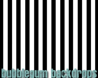 Black and White Stripe -  Vinyl Photography  Backdrop Photo Prop
